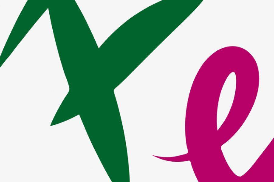 Branding</br>Repubblica e Cantone Ticino