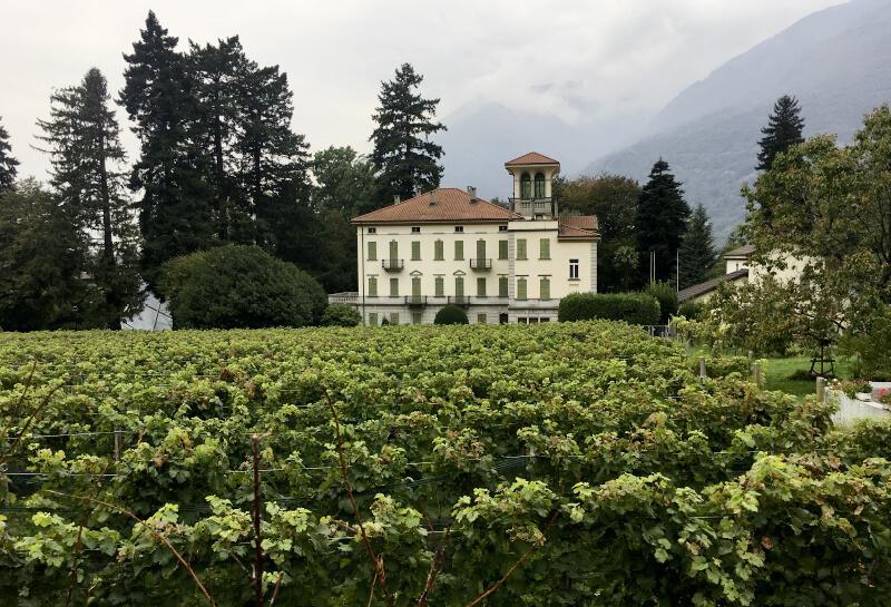 Museo Villa dei Cedri, Bellinzona